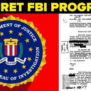 COINTELPRO The Secret FBI Program - Explained
