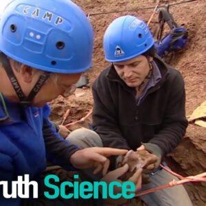 Dinosaur Detectives   Episode 7   Docuseries   Reel Truth Science