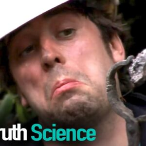 From Scratch | Episode 3 | Docuseries | Reel Truth Science