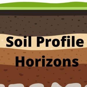 Soil Profile and Soil Horizons