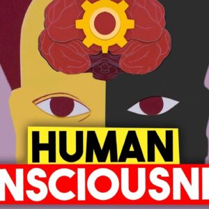 The Crazy Truth About Human Consciousness