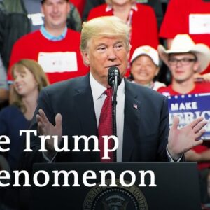 USA - Trump and the midterms   DW Documentary (Trump documentary)