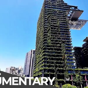 World's Biggest Vertical Garden & Curious Plastic Bottle Village | Mystery Places | Free Documentary