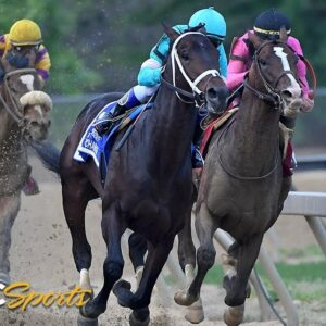 Preakness Stakes 2019 (FULL RACE), jockey John Velazquez thrown from horse   NBC Sports