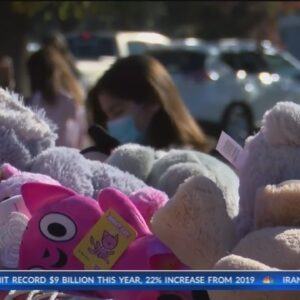Annual Condors Teddy Bear Toss goes on, but altered because of pandemic
