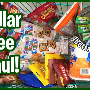 Dollar Tree Couponing - 22 Items For $8.50   Small Walmart Ibotta Haul   Meek's Coupon Life