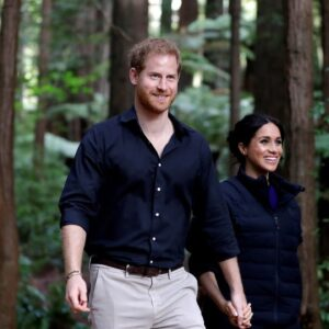 Prince Harry conflates COVID-19 with climate change