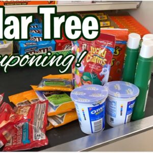 Dollar Tree Couponing   Small Repeat Haul   16 Items For $.41 Each   Meek's Coupon Life