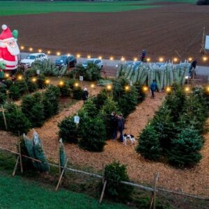 UK relaxes COVID rules for Christmas