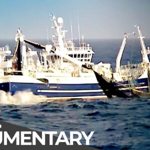 Exploitation of the Arctic: The End of Fishing? | Ice Race | Free Documentary