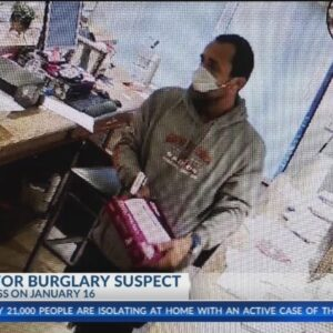 BPD searching for business burglary suspect