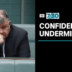Is Craig Kelly undermining confidence in the vaccine rollout? | 7.30