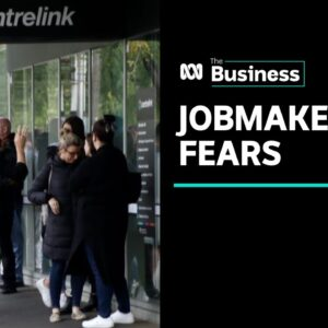 JobMaker could pay bosses to cut wages and jobs, warns Treasury | The Business