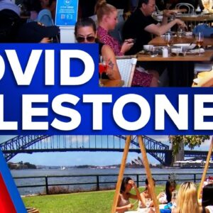 NSW reaches new COVID-19 milestone | 9 News Australia