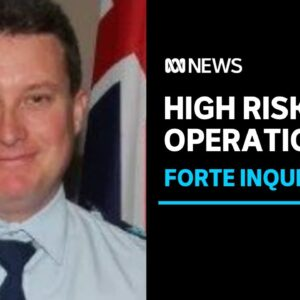 Brett Forte's partner tells inquest his actions the day he was killed saved her life | ABC NEWS
