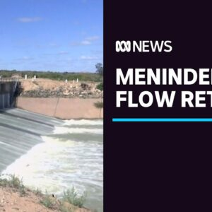 Menindee in far west NSW releases flood flows after long drought | ABC News