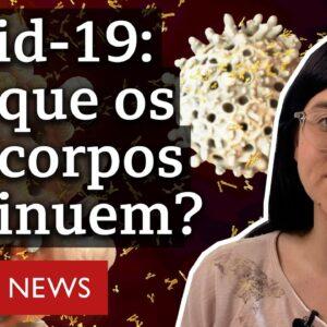 Imunidade contra a covid-19: como funciona e por que diminui com o tempo