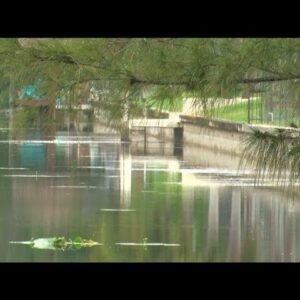 Rain helps to combat low levels in Cape Coral canals