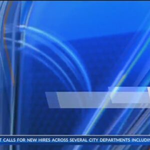 Kern County Sheriff Donny Youngblood discusses recent spike in shootings